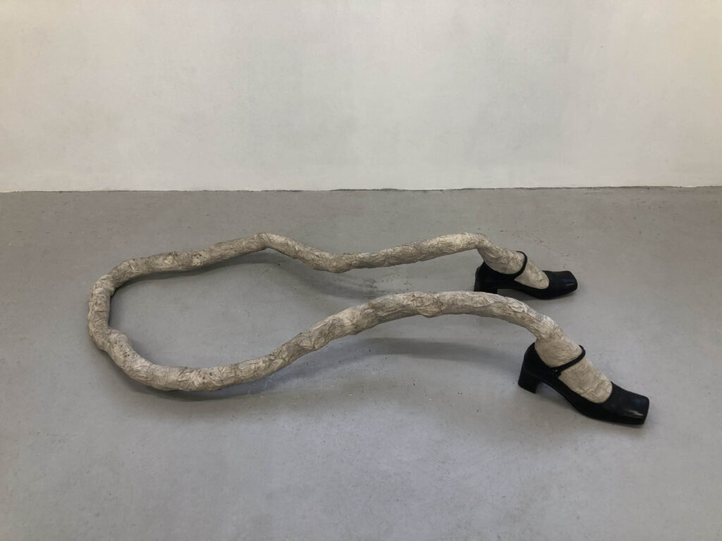 Feet, 2019, mixed media - SALVATORE PIONE -courtesy of the artist